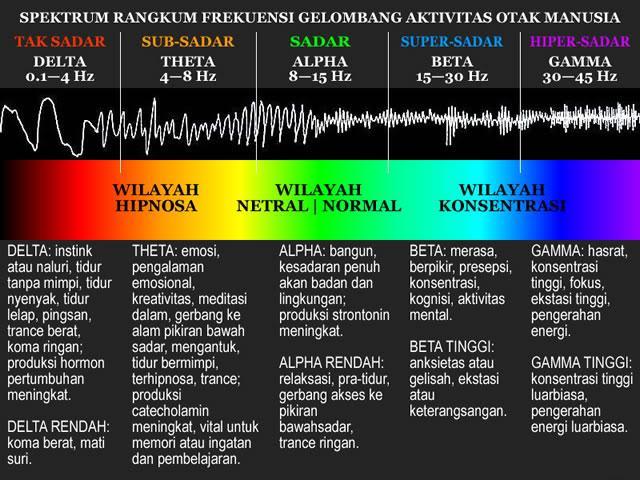 brain-spectrum