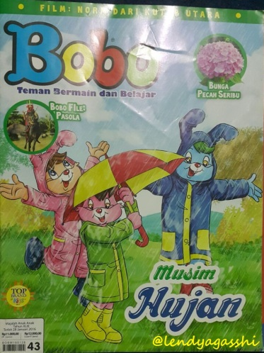coverbobo